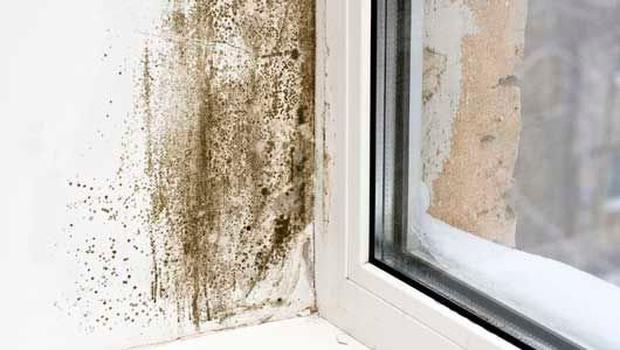 How to rid of black mould in your bedroom Independent