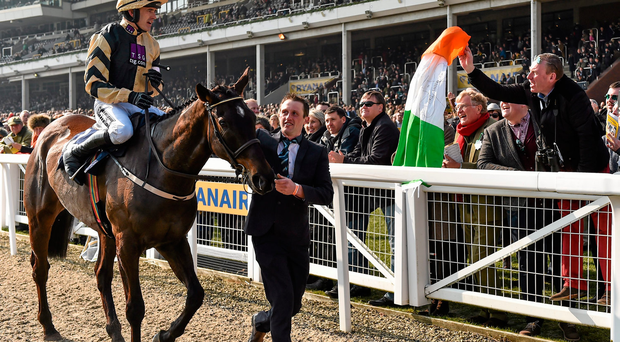 Ruby Walsh after winning the JLT Novices' Steeple Chase on Black Hercules at Cheltenham last year