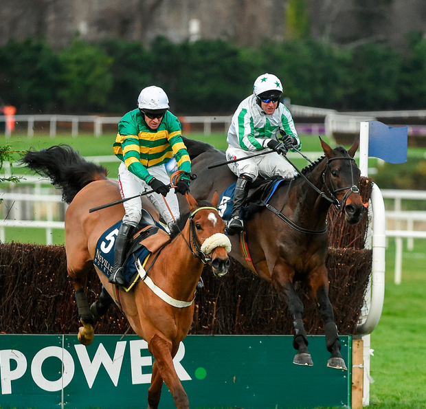 Coney Island (left), with Barry Geraghty up, has been ruled out of Cheltenham