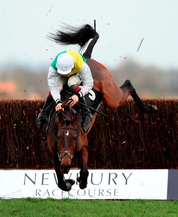 There was an unhappy ending for 7/2 joint favourite Beggars Cross and jockey Aidan Coleman as they parted company at the final fence in yesterday's novices' handicap chase at Newbury – Coleman had better fortune in the previous race as he steered 13/8 favourite Plaisir D'Amour to victory for Venetia Williams. Photo: Adam Davy/PA