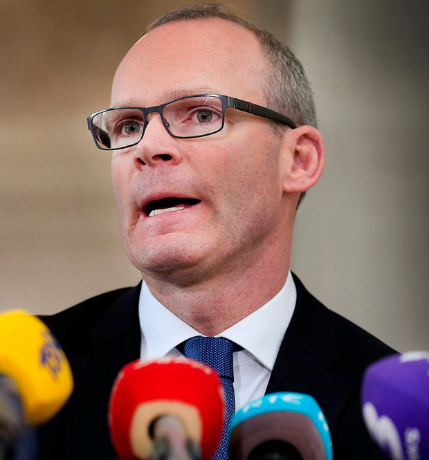 Minister for Housing, Planning and Local Government Simon Coveney. Photo: Steve Humphreys