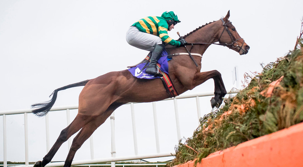 Jody McGarvey and Great Field manage to survive a scare at the last to land the EBF Novice Chase at Leopardstown Photo: Patrick McCann