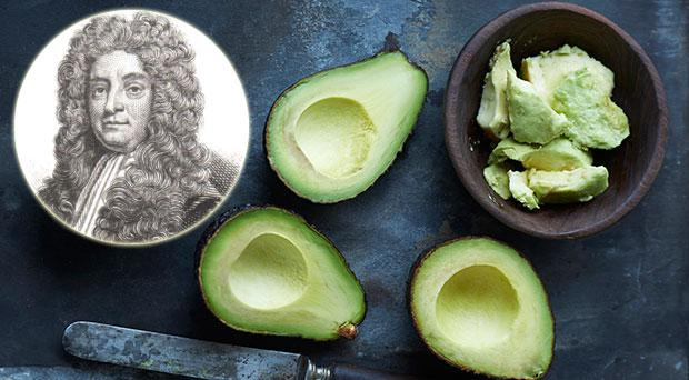 An Irishman is said to have coined the term 'avocado'