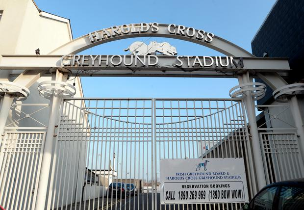 Harold's Cross Greyhound Stadium. Photo: Caroline Quinn