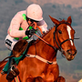 Limini, with Ruby Walsh up Picture: Seb Daly / SPORTSFILE