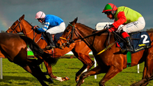 Friday's Cheltenham Gold Cup ready for dramatic showdown. Photo: Sportsfile/stock photo
