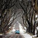 A car drives during snowy conditions along the Dark Hedges, which was featured in the TV series Game of Thrones, near Ballymoney in County Antrim. Like Game of Thrones, there will be plenty of action, plenty of blood and lots to focus the minds of the industry's tribal leaders Photo: AFP/Getty Images