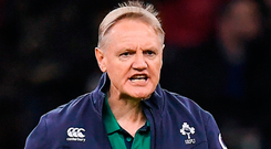 Ireland head coach Joe Schmidt at the Principality Stadium in Cardif. Photo: Brendan Moran/Sportsfile