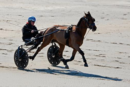 Denis O'Reilly from Drimoleague and his horse Emperor Sovereign on the beach at Inchydoney Island. Photo: Denis Boyle