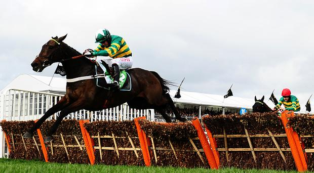 CHELTENHAM, UNITED KINGDOM - MARCH 12: Buveur D'Air ridden by Noel Fehily jumps the last before going on to win the Stan James Champion Hurdle Challenge Trophy during Champion Day of the Cheltenham Festival at Cheltenham Racecourse on March 14, 2017 in Cheltenham, England. (Photo by Harry Trump/Getty Images)