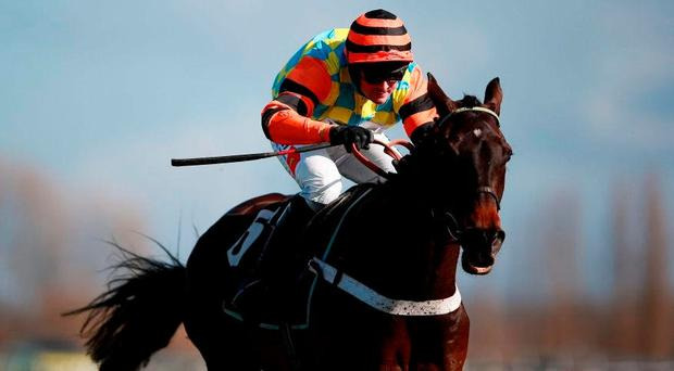 After a fair share of mishaps during his chasing career, Might Bite can take centre stage in today's RSA Chase for the in-form Nicky Henderson yard. Photo credit: David Davies/PA Wire