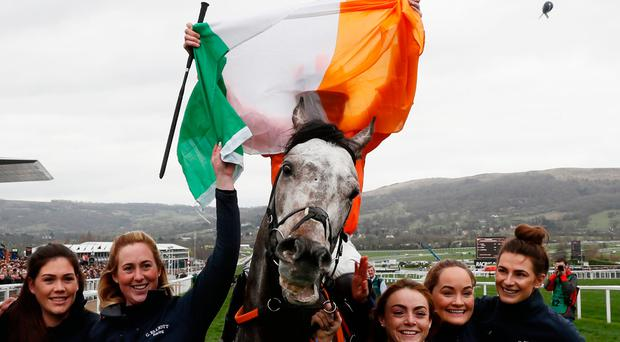 Ireland's Jack Kennedy celebrates after winning on Labaik at Cheltenham this year