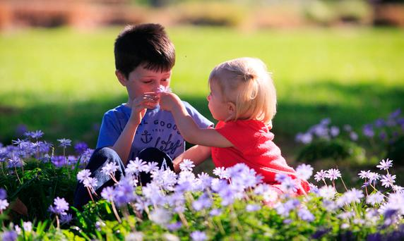 Makenzie Byrne (6) and his sister Shaynah Coughlan (1) enjoy the good weather at the Botanic Gardens, Glasnevin. Photo: Gareth Chaney Collins