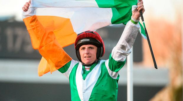 Jamie Codd celebrates with the tricolour as he enters the winner's enclosure after winning the Champion Bumper on Fayonagh. Photo: Cody Glenn/Sportsfile