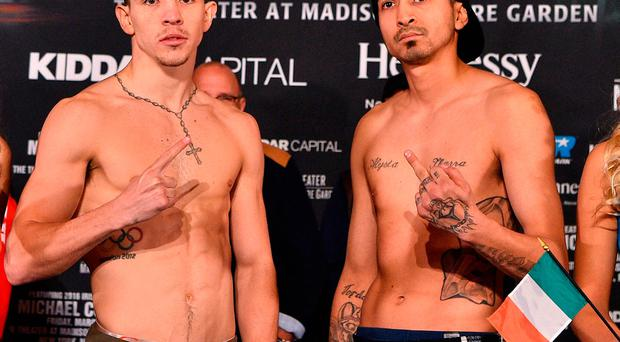 Michael Conlan, left, faces off with Tim Ibarra