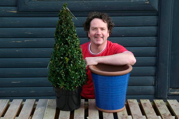 Diarmuid Gavin: a potted garden will work equally well on a deck or patio. Photo: Fran Veale