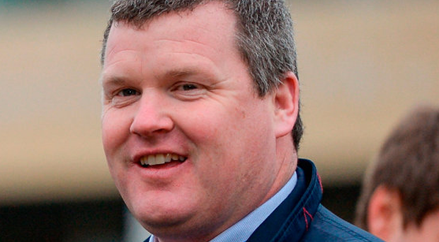 The enigmatic Open Eagle returns after a year and can be erratic at his hurdles so preference is for Gordon Elliott's (pictured) Midnight Escape. Photo by Seb Daly/Sportsfile