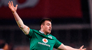Scannell featured in four of Ireland's five games. Photo: Sportsfile