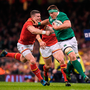 'Only one player seriously enhanced his Lions prospects. Step forward CJ Stander, one of the big success stories of the Six Nations.' Photo: Brendan Moran/Sportsfile