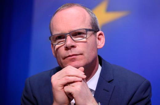 Housing Minister Simon Coveney. Photo: Damien Eagers