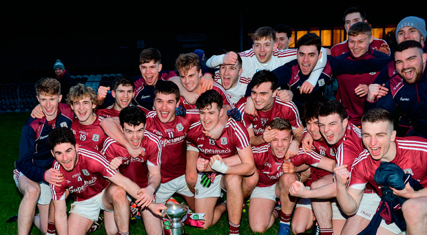 Galway players celebrate with the cup Photo: Piaras Ó Mídheach/Sportsfile