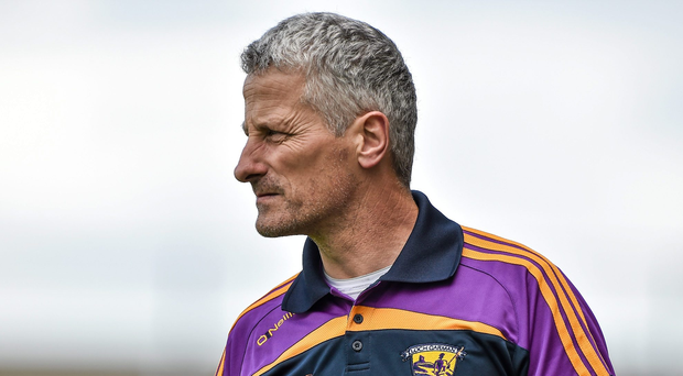 'While not reaching the heights achieved under Ryan, Wexford were consistent during O'Brien's (pictured) two-year term, making successive Leinster semi-finals while blooding a number of rookies' Photo: Sportsfile