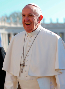 Fr O'Hanlon said Pope Francis (pictured) wanted to change the role of women, and he urged the Bishops to embrace his ideas more enthusiastically Photo: REUTERS/Tony Gentile