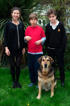 Adrienne Murphy with her son Caoimh Connolly, his brother Fiach and autism assist dog Cosmo. Photo: Tony Gavin