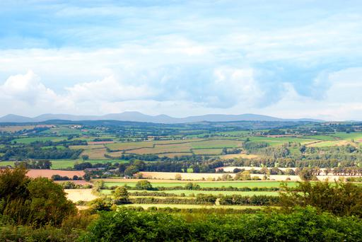 The land market in Leinster and in Connacht/Ulster faired better than Munster