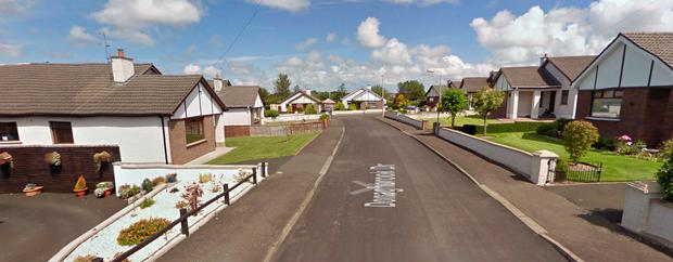 The incident happened in the Donaghbrook Drive area of Ballymoney, Co Antrim on Monday
