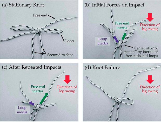University of California at Berkeley handout image illustrating how knot-failure happens in seconds, triggered by a complex interaction of forces, as scientists have finally solved the knotty problem of unravelling laces. Photo: PA