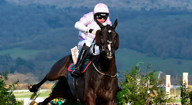 Bless The Wings finishing runner-up under Jamie Codd at Cheltenham – Gordon Elliott's charge will carry plenty of support to go one better in the traditional Fairyhouse showpiece on Monday. Photo: Getty