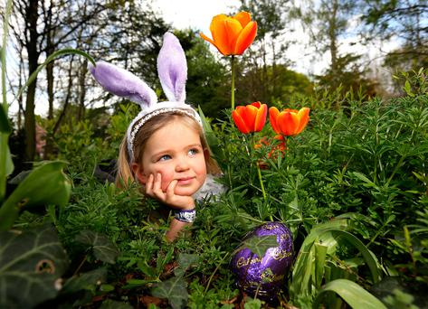 I'M SO EGG-CITED: Three-year-old Grace Carroll, from Clane, Co Kildare, pictured during the Cadbury Easter Egg Hunt in Merrion Square in aid of Barnardo's. Photo: Frank McGrath