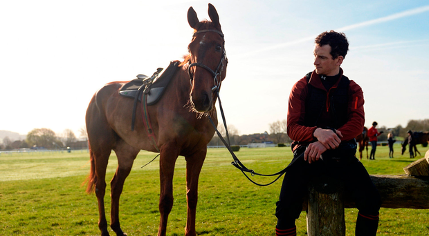 Here with Haymount on the gallops at Cheltenham, where the stop-start nature of the pace in the four-miler didn't suit him. Photo by Seb Daly/Sportsfile