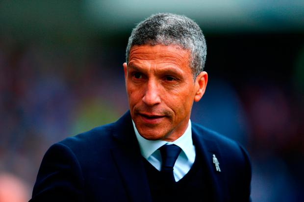 Chris Hughton, manager of Brighton & Hove Albion. Photo: Dan Istitene/Getty Images
