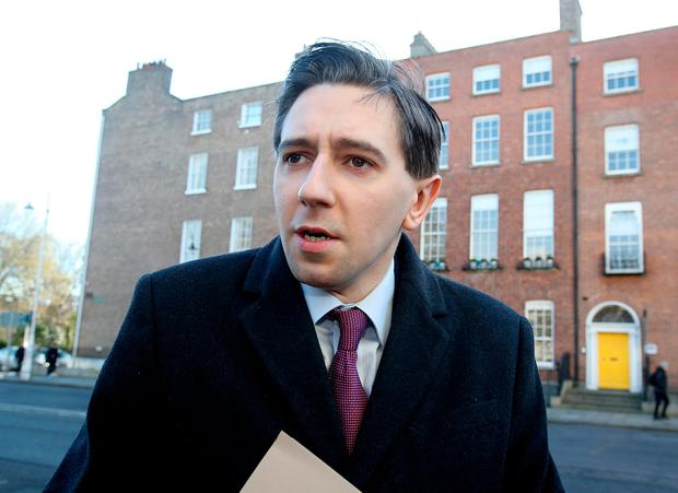 Minister Simon Harris said the hospital will be independent Picture: Tom Burke