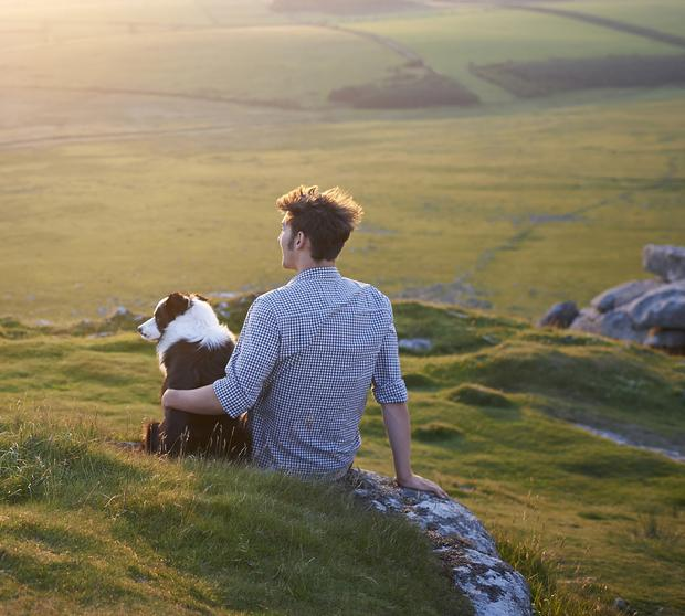 It costs around €2,500 a year to home a dog and you'll most likely have them with you for over a decade.