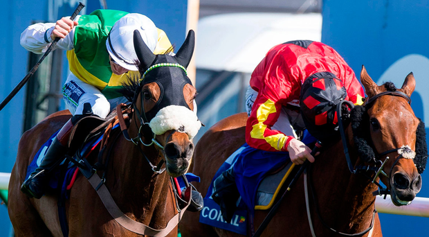 Vicente (left) ridden by Sam Twiston-Davies wins The Coral Scottish Grand National. Photo: PA Wire