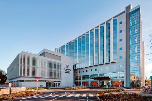 Campus: The St Vincent's Healthcare Group encompasses both the private hospital and the public hospital on its site on Merrion Road, Dublin