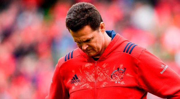 Munster's Director of Rugby Rassie Erasmus. Photo: Ramsey Cardy/Sportsfile