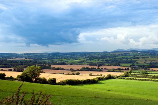 Respondents to our survey were strongly in favour of not selling their farms. Overall, 84pc said they would not consider selling their farm, while just 16pc said they would consider it. (Stock picture)