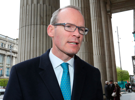 Minister Simon Coveney. Photo: Frank McGrath