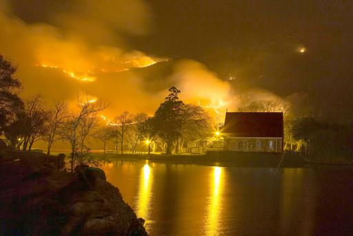 The wildfire rages around the iconic church at Gougane Barra and was still burning yesterday afternoon, leaving sheep to flee the smouldering bushes. Photo: John Dela