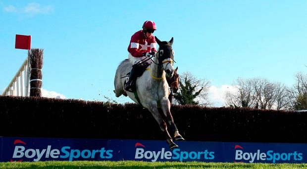 Disko ridden by Bryan Cooper on the way to winning the Growise Champion Novice Chase during day one of the Punchestown Festival
