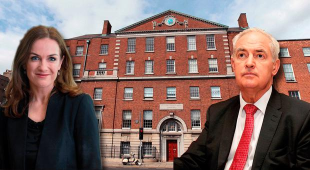 Maternity Hospital Critic Quits Holles St. Board