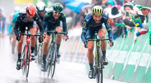 Switzerland's Michael Albasini (R) sprints to win yesterday's stage. Photo: Getty