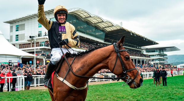 Nichols Canyon and Ruby Walsh in Cheltenham