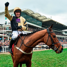 Nichols Canyon and Ruby Walsh will be hoping to repeat their Cheltenham success at Punchestown today. Photo: Sportsfile