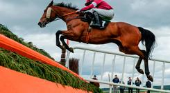 It's Day Three at Punchestown