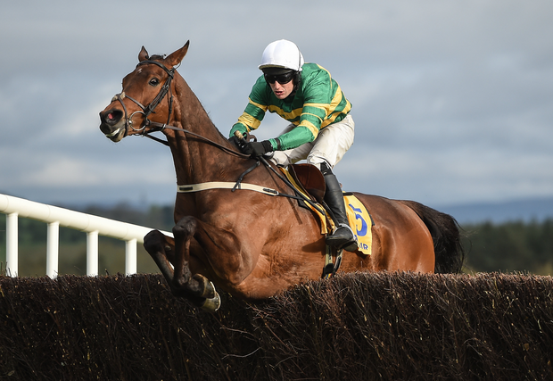 Great Field, with Jody McGarvey up, jump the last on their way to winning the Ryanair Novice Steeplechase at Punchestown Racecourse in Naas, Co. Kildare. Photo by Seb Daly/Sportsfile